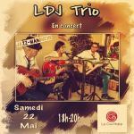 Ldj trio en concert